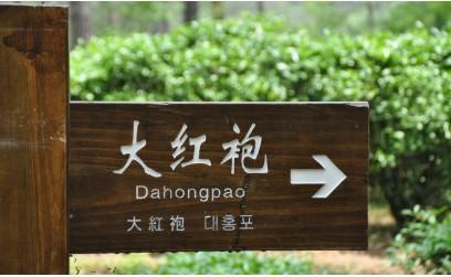 Китайский чай «Да Хун Пао» - Большой Красный Халат